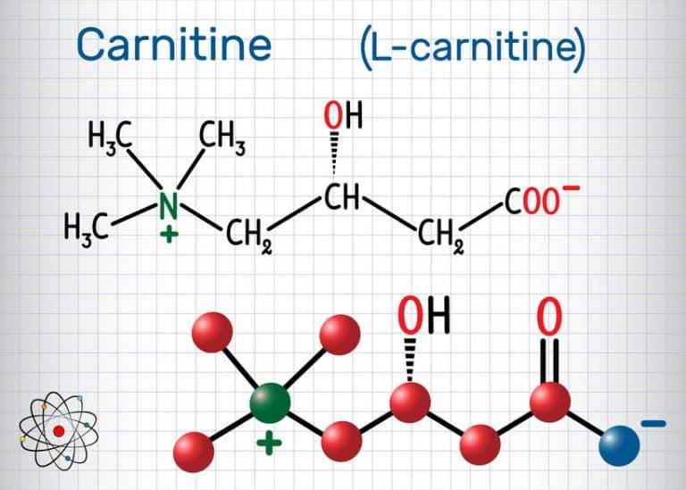 Gráfico mostra a fórmula química da l-carnitina