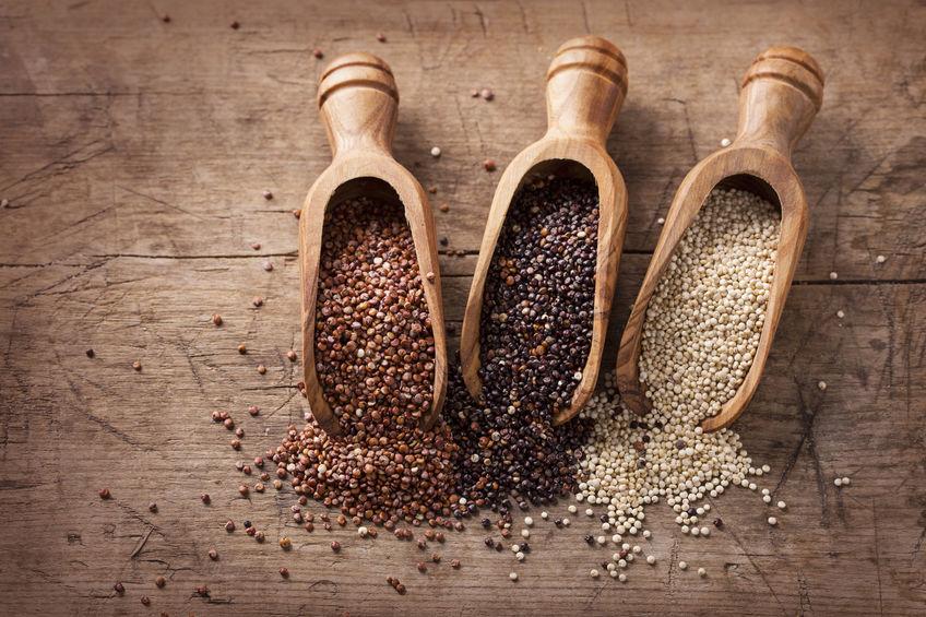 grãos de quinoa