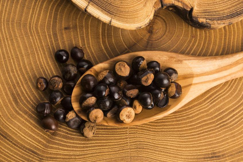 sementes de guaraná