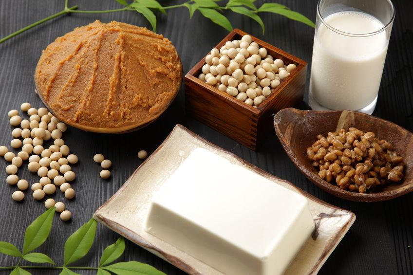 productos elaborados a partir de soya