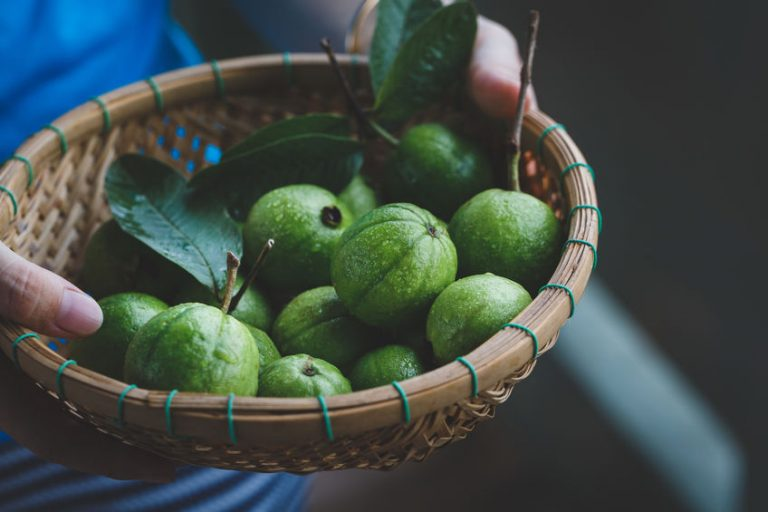 guavas on a bowl
