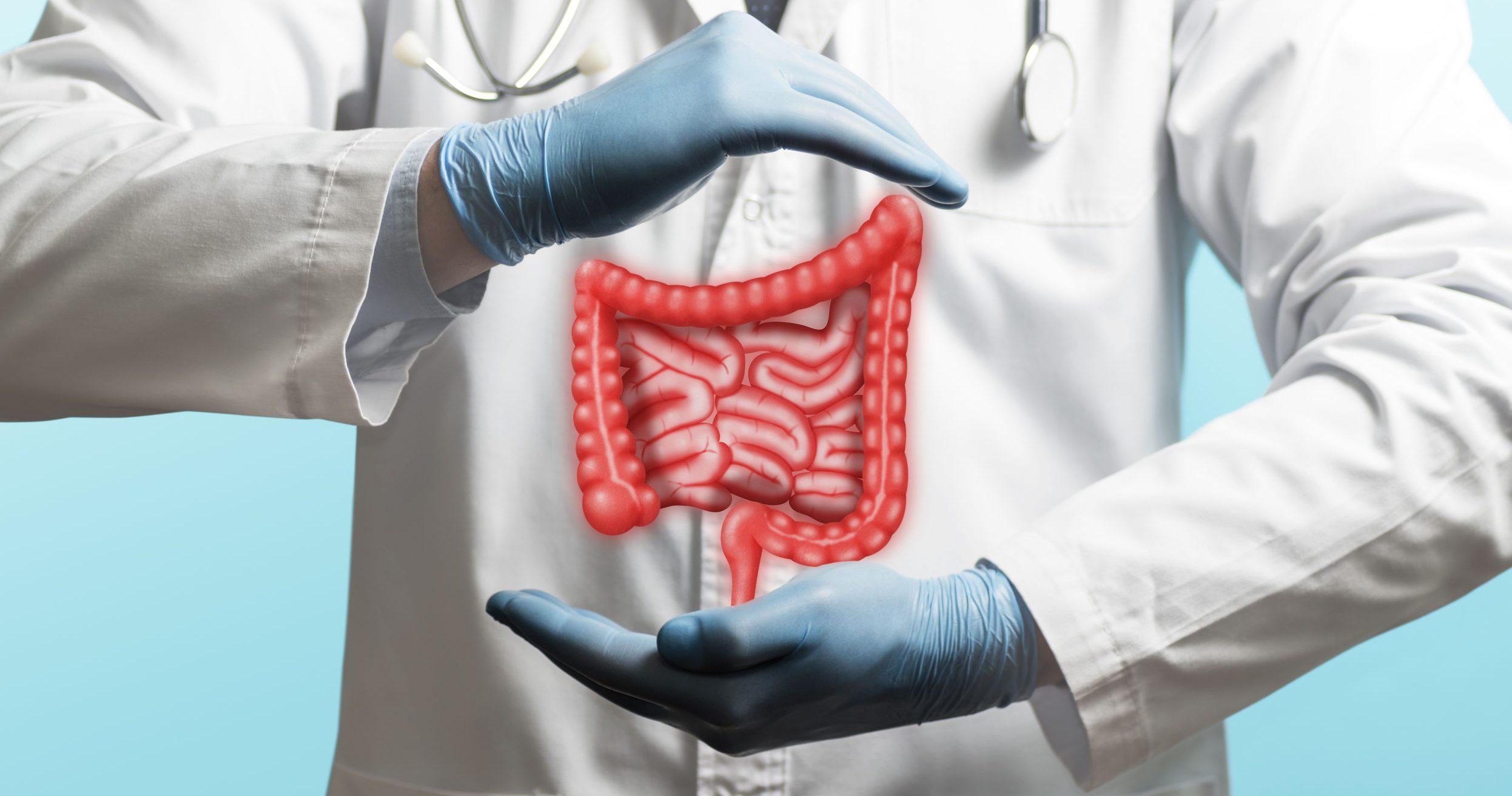 Cólon irritável: Dieta e suplementos para o tratamento
