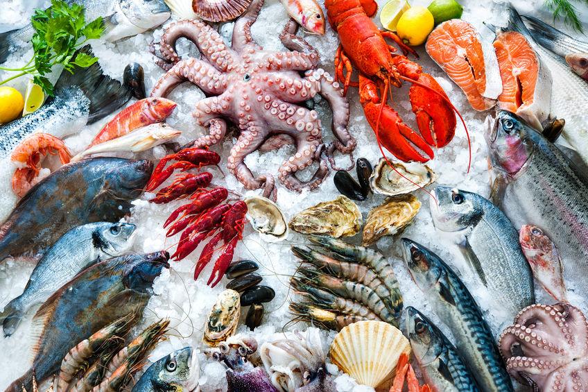 frutos do mar ricos em vitamina b5