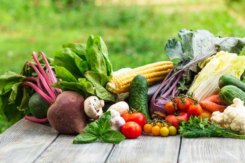 alimentos ricos em alcalinos