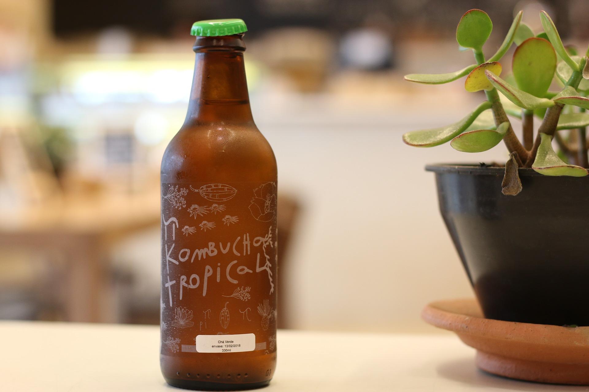 Imagem mostra uma garrafa de kombucha.