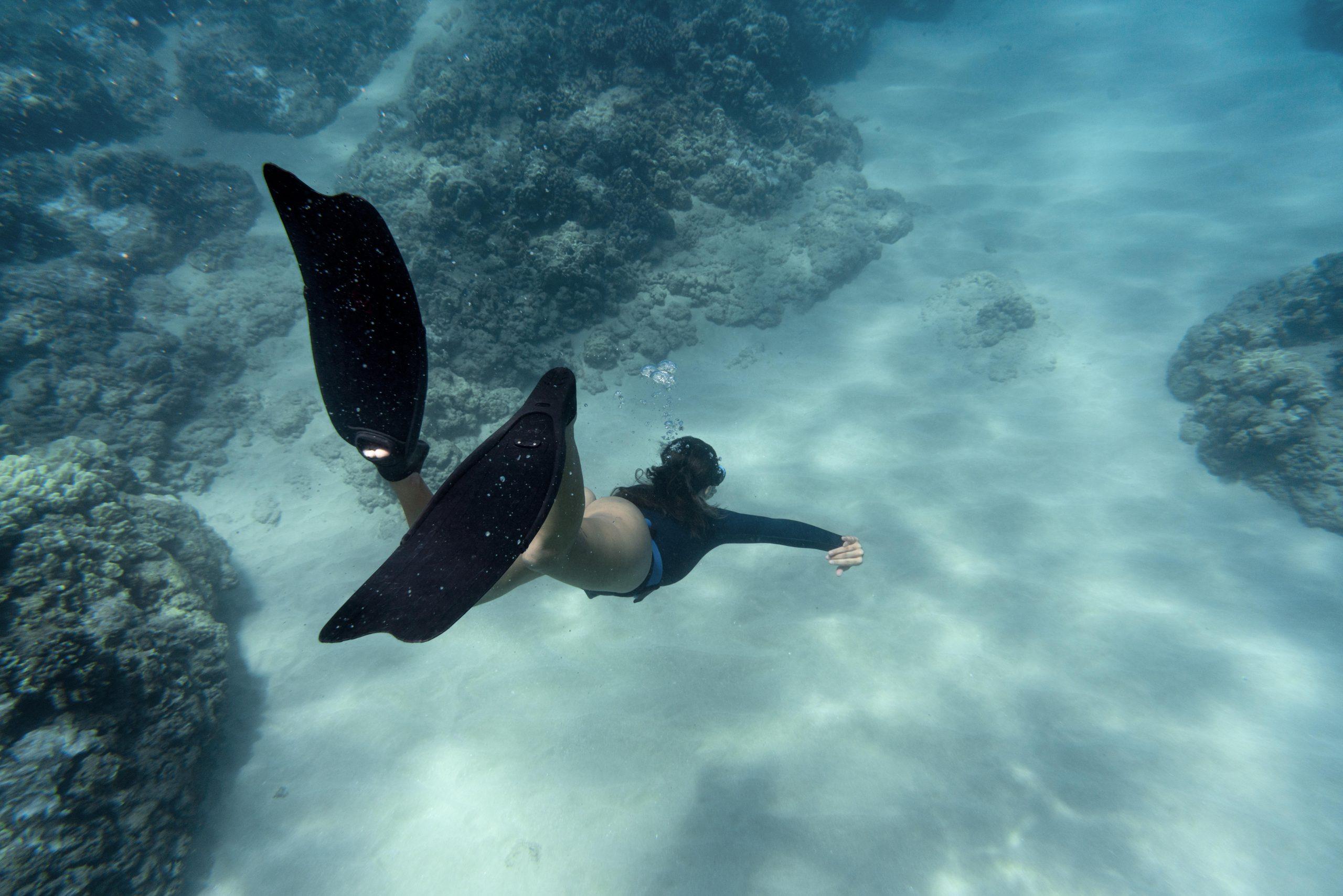 Mulher com roupa de mergulho e pés de pato nadando no oceano